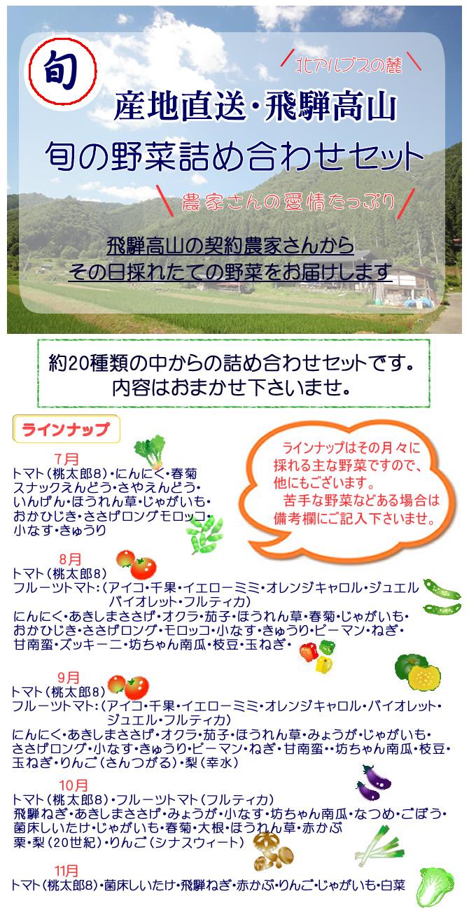 野菜セット1